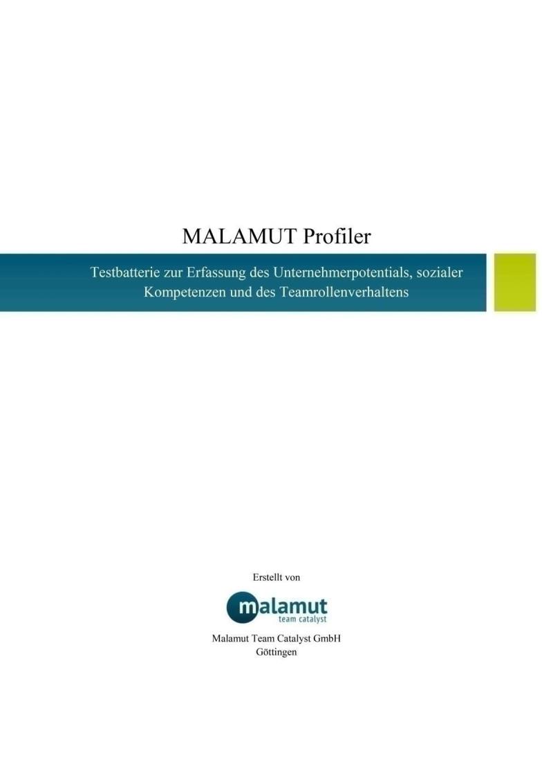 MALAMUT-Profiler 1 Durchführung inkl. Einzelprofil